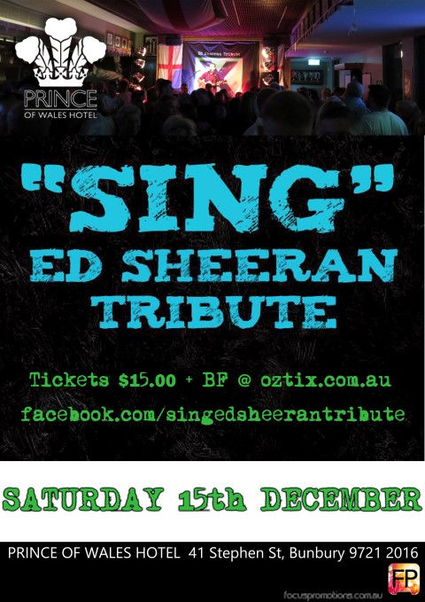 Ed Sheeran Tribute - Prince of Wales Hotel Bunbury (Small)